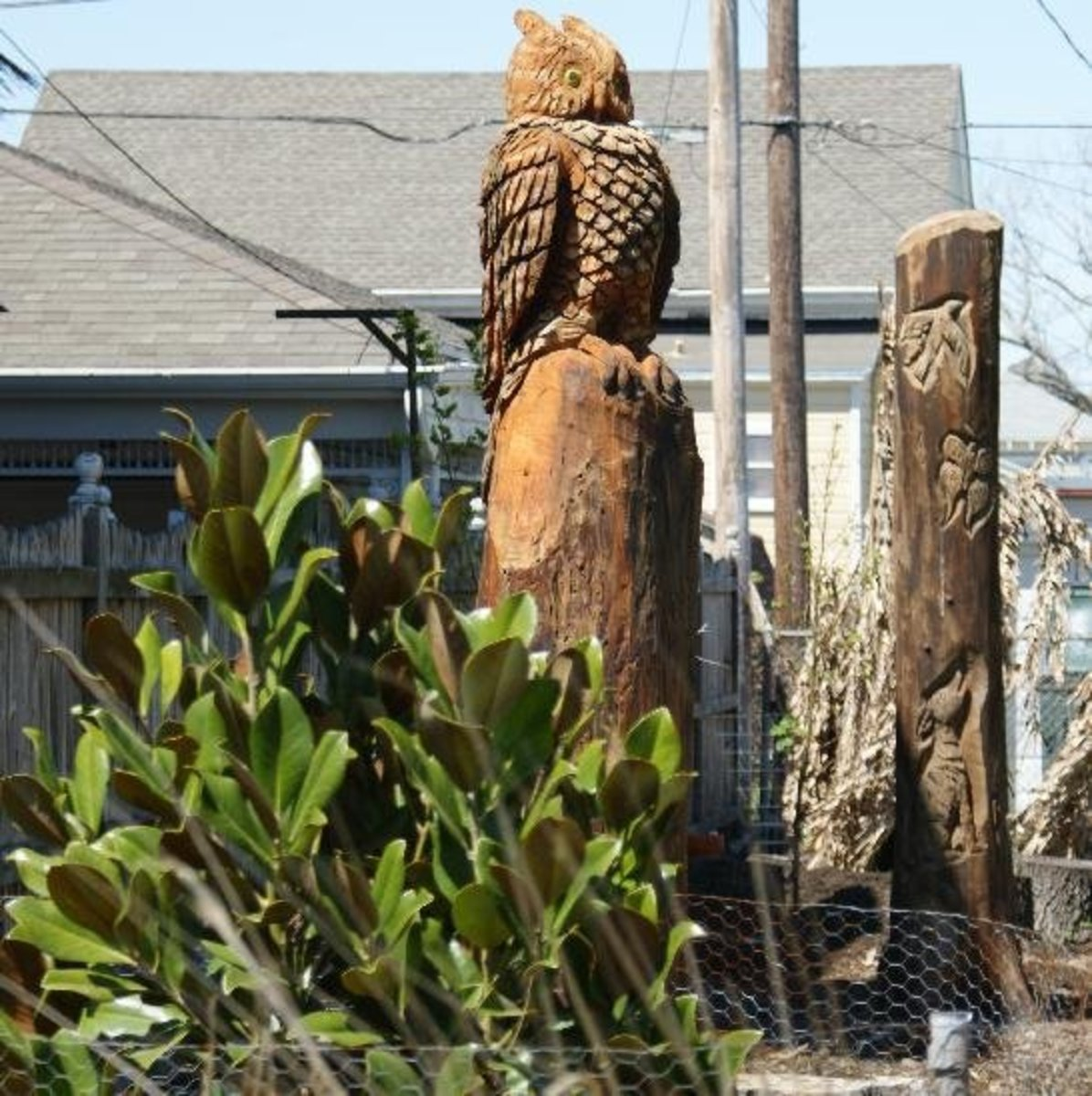 Galveston s dead tree sculpture carvings hubpages
