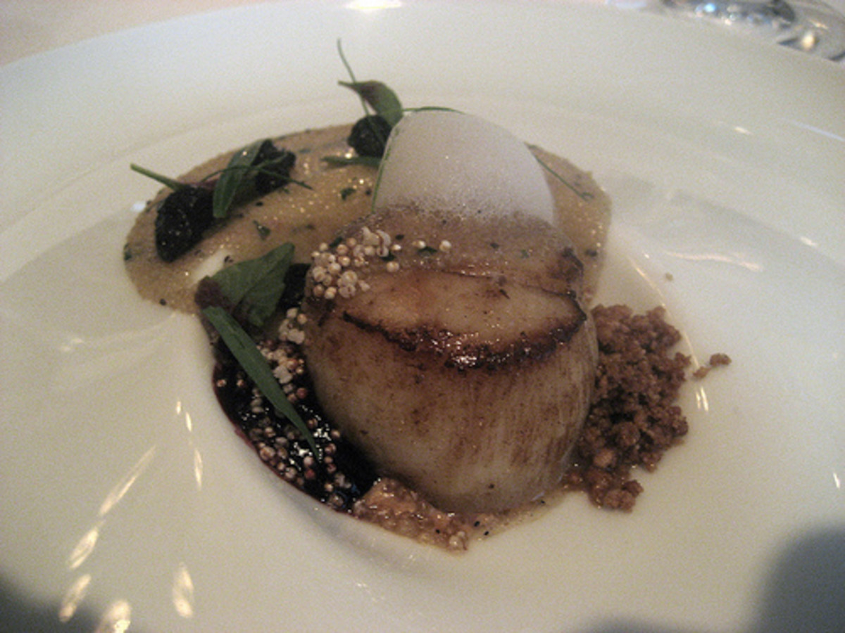 Scallop with Amaranth