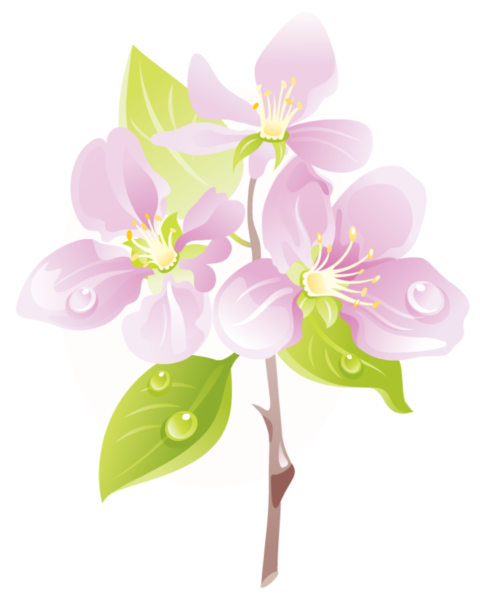 Visit the Free Flowers Clip Art hub in the left column to see and download this and other similar art