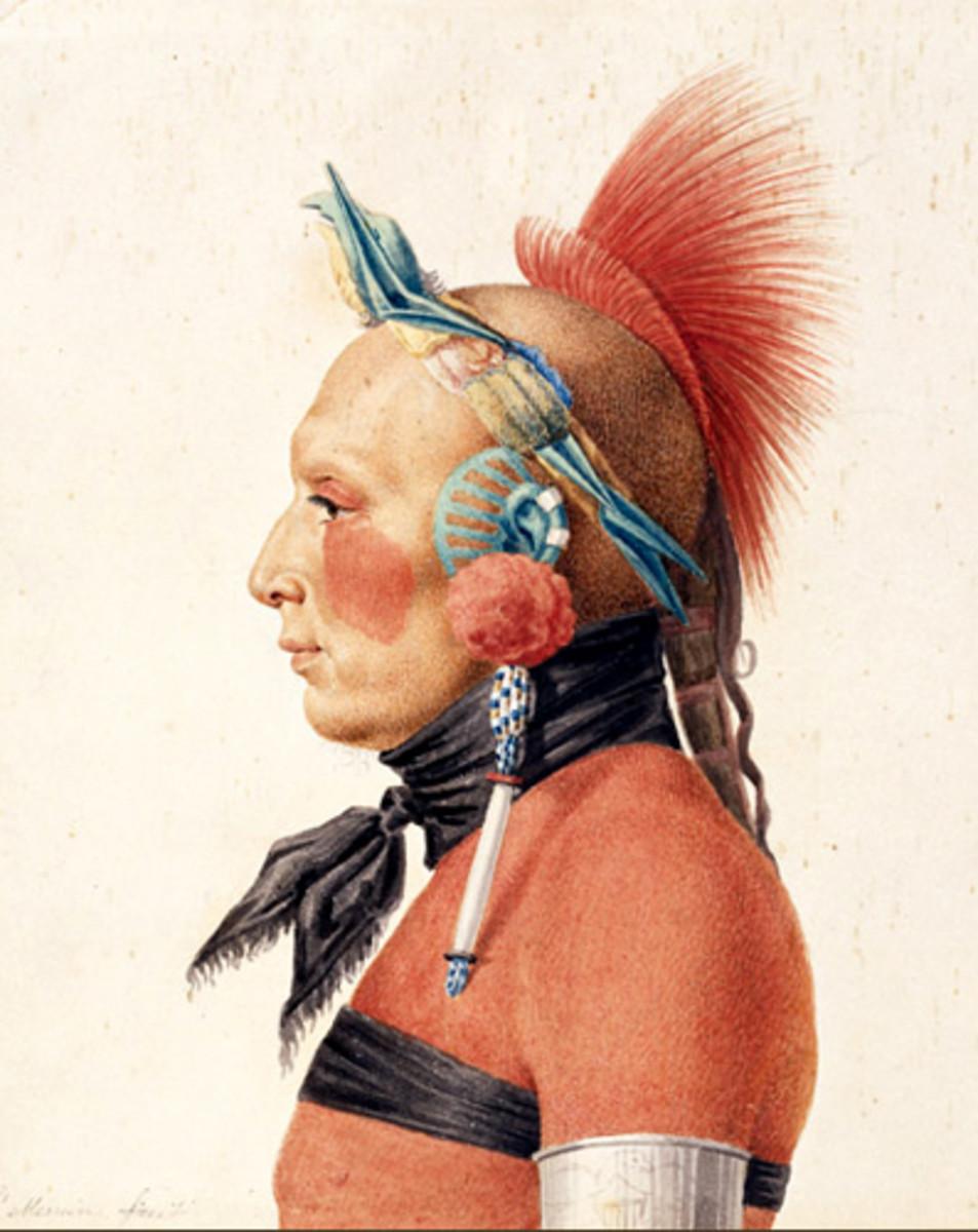 Oklahoma Treasure: An Osage Warrior