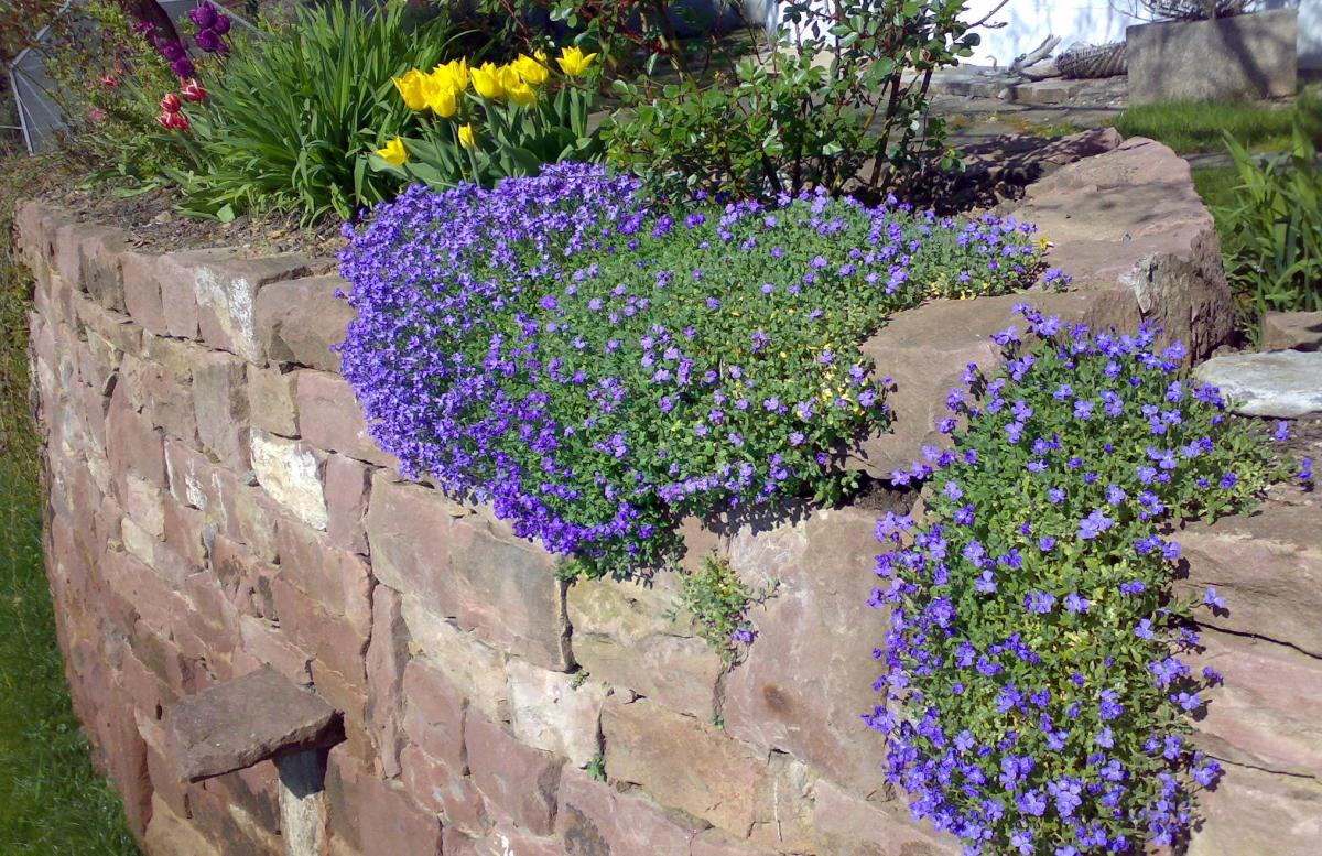 Flagstone and retaining walls are other popular hardscape features using landscape stones. (Photo courtesy of sxc.hu)