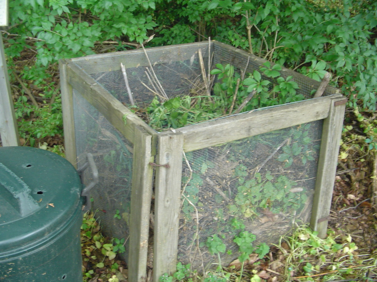 Mesh compost bin for leaves and grass