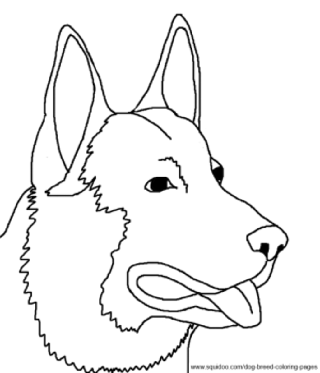 German Shepherd coloring page