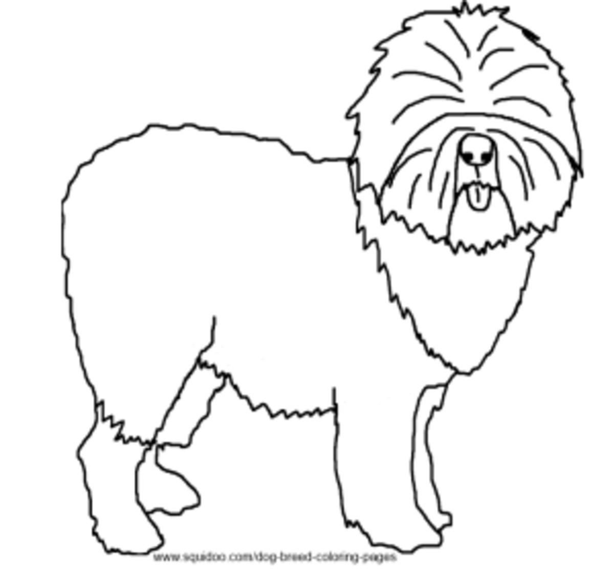 Old English Sheep Dog coloring page