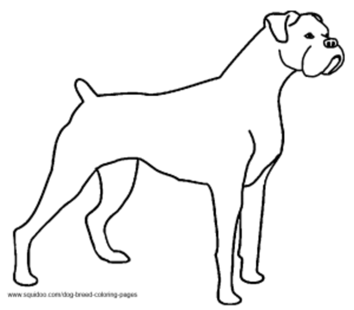 Dog breed coloring pages hubpages for Printable boxer dog coloring pages
