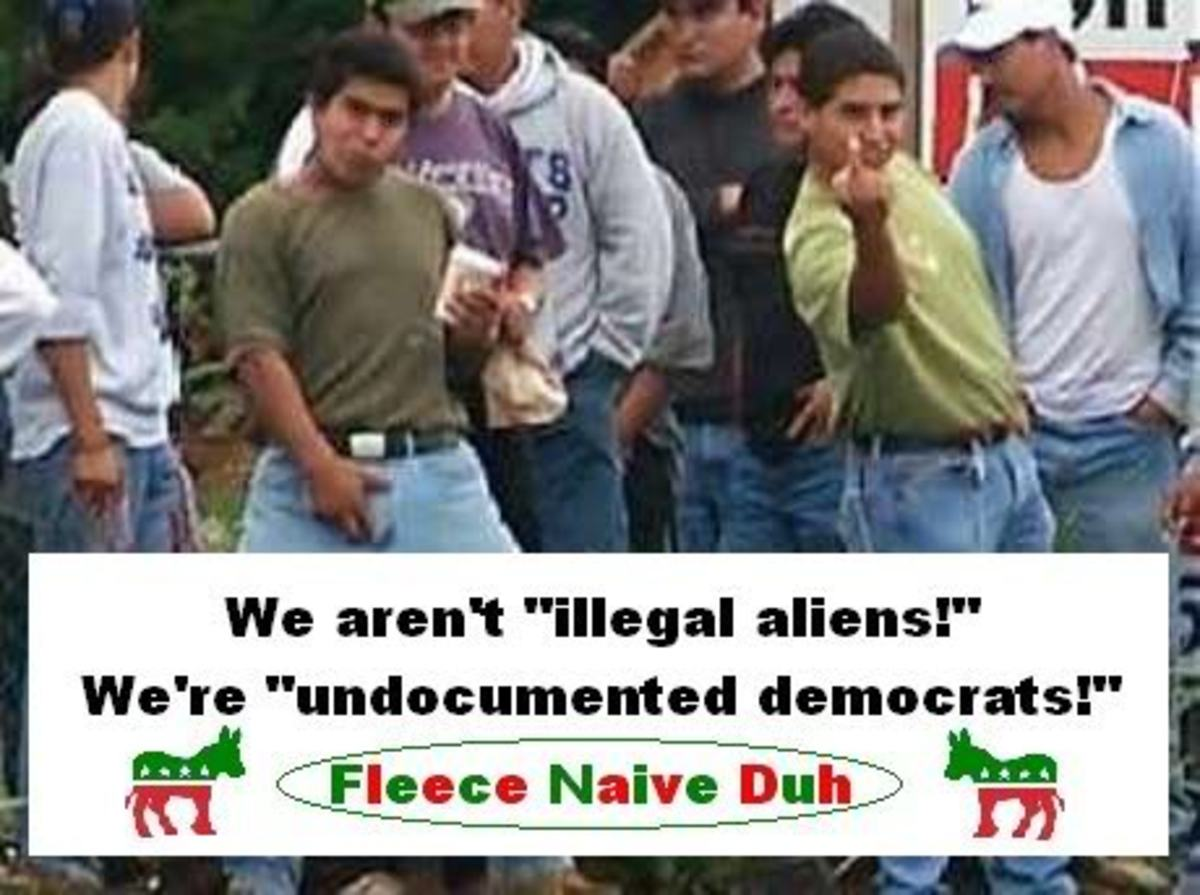 ILLEGAL IMMIGRANTS ARE GRATEFUL TO BE IN AMERICA