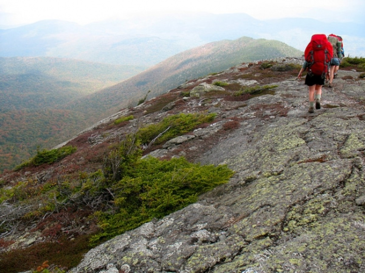 Thanks to Chewonski Semester Schhol on Flickr for sharing this Appalachian Trail picture, cc licensing.