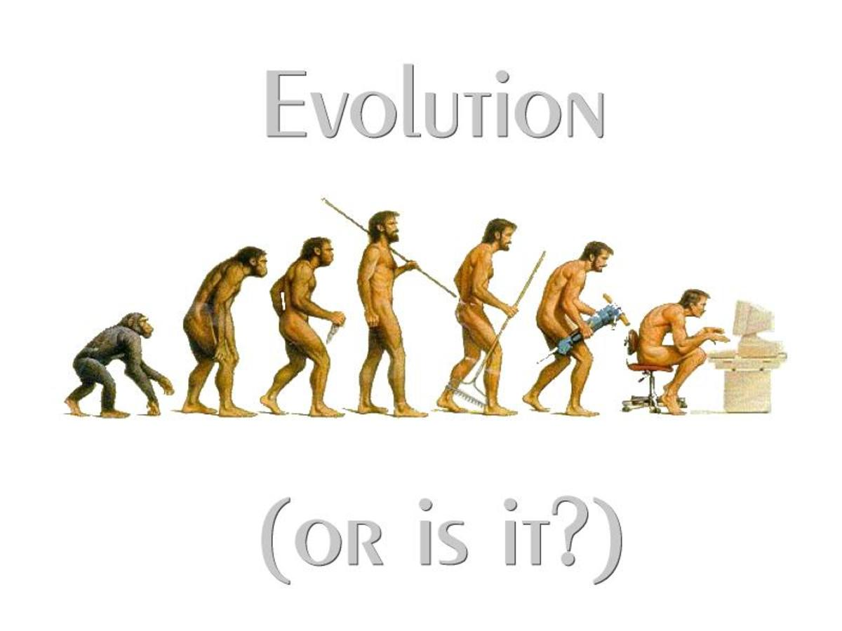 This contemporary take on evolution encapsulates the basic idea of man's scent from earlier forms according to Darwin.