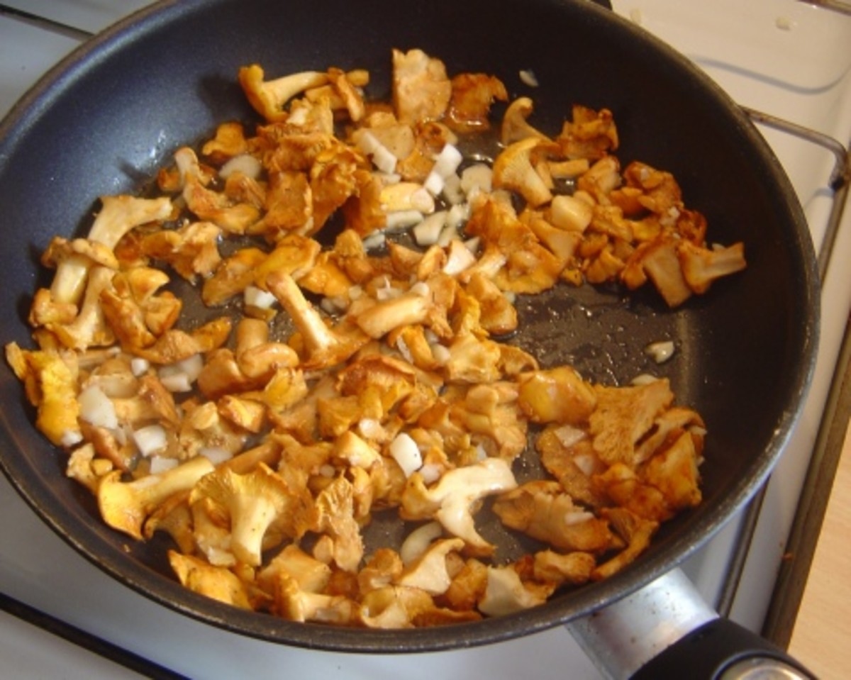 My French friend found and cooked these chanterelles.