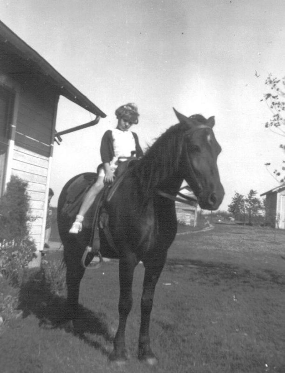 My aunt Carol on her father's horse Brownie. There's quite a story about Brownie saving my grandfather's life.