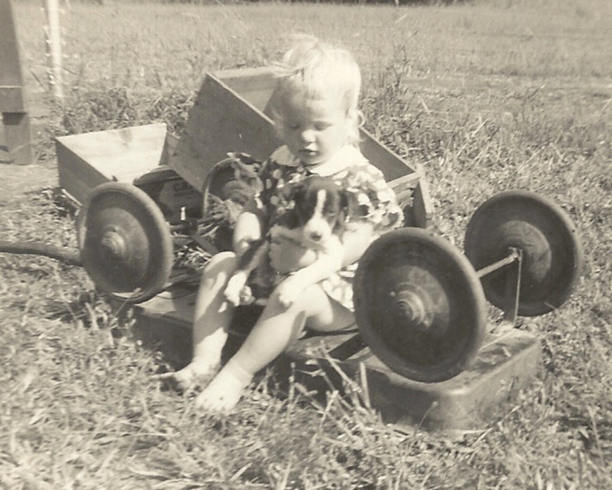 Many hours of fun with the wagon in the 1950s.