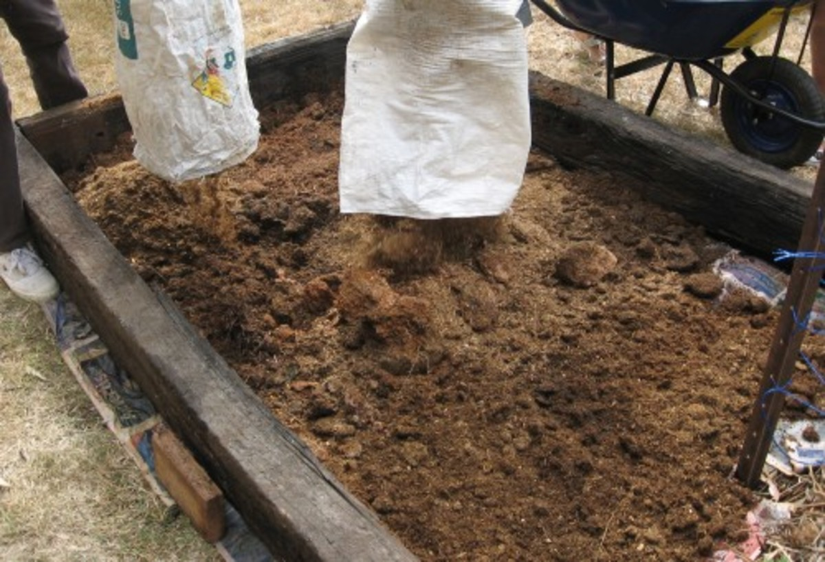 Fill garden with manure