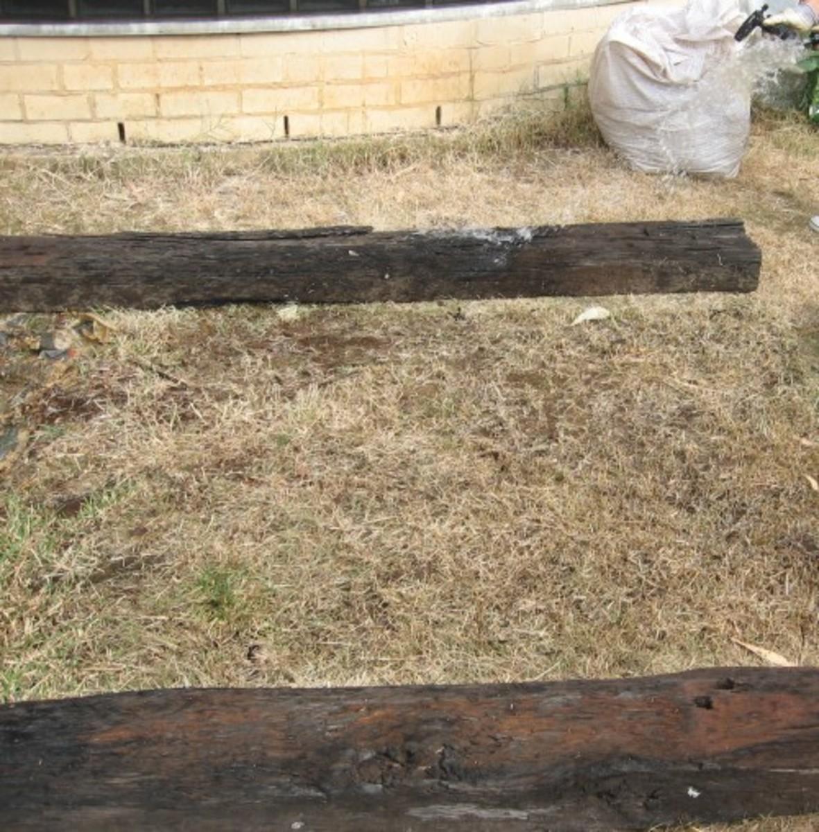 No Dig Garden Step #3
