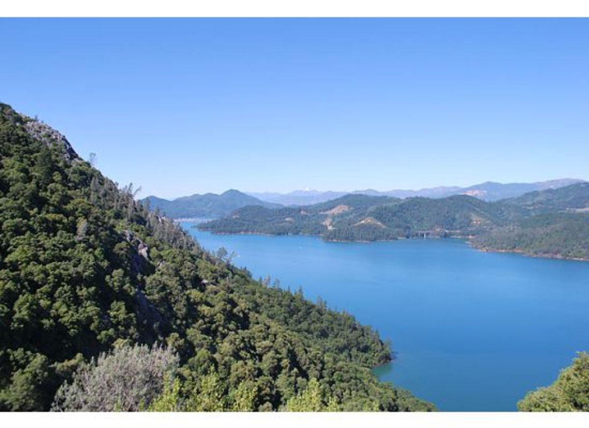 About 1/2 mile above Lake Shasta near the caverns' entrance