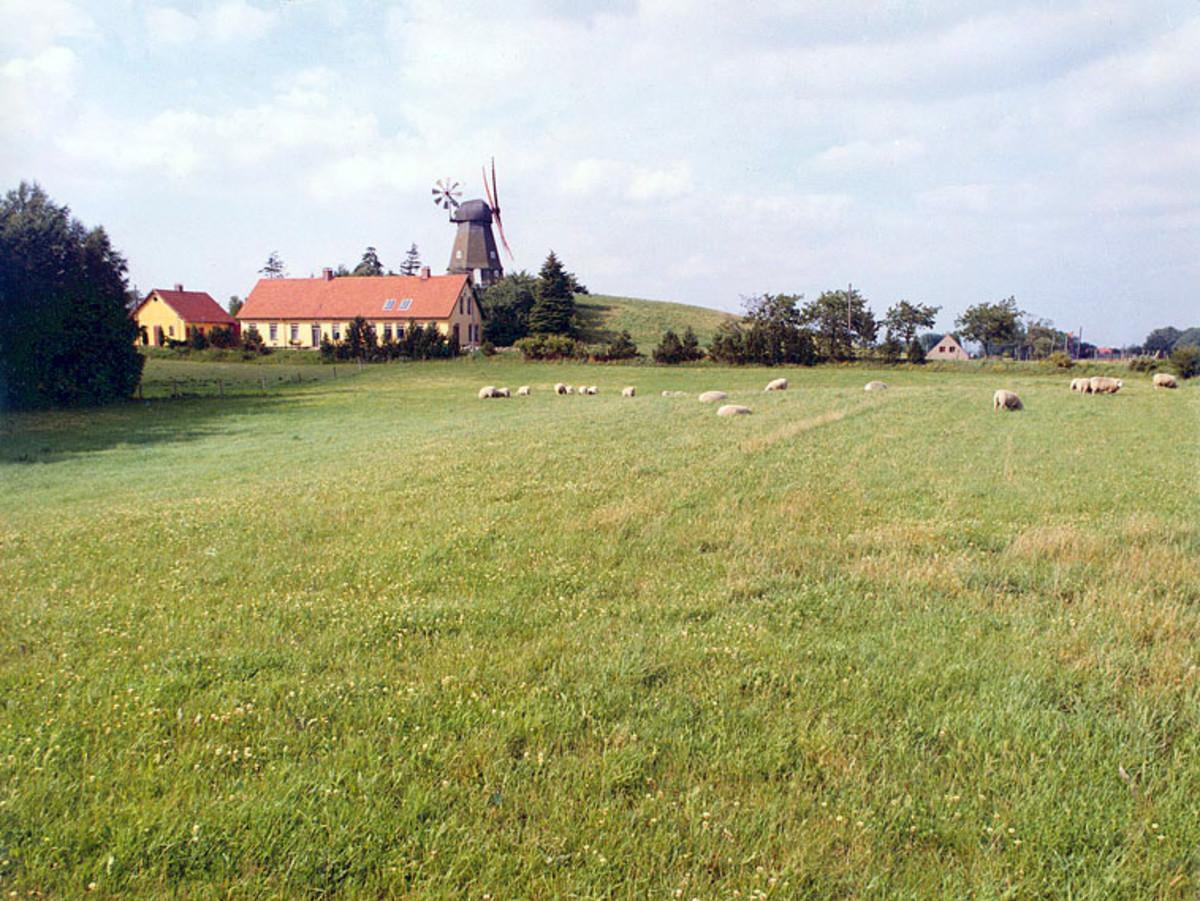 Farming in Denmark