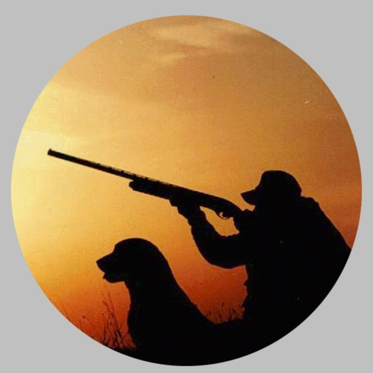 Hunter and hunting dog in the field