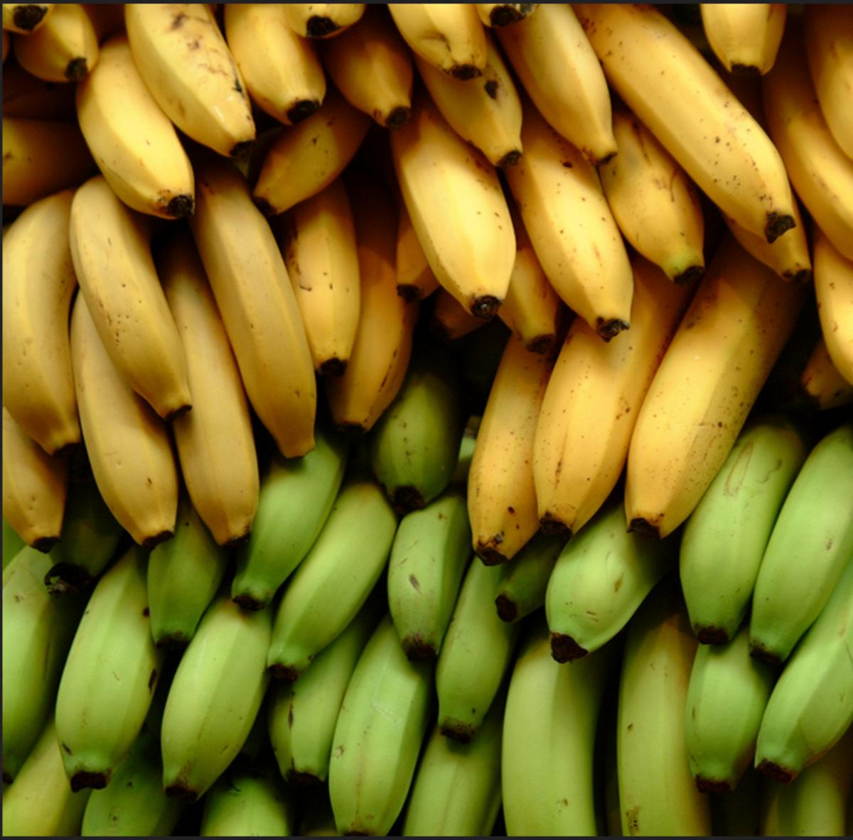 banana-fun