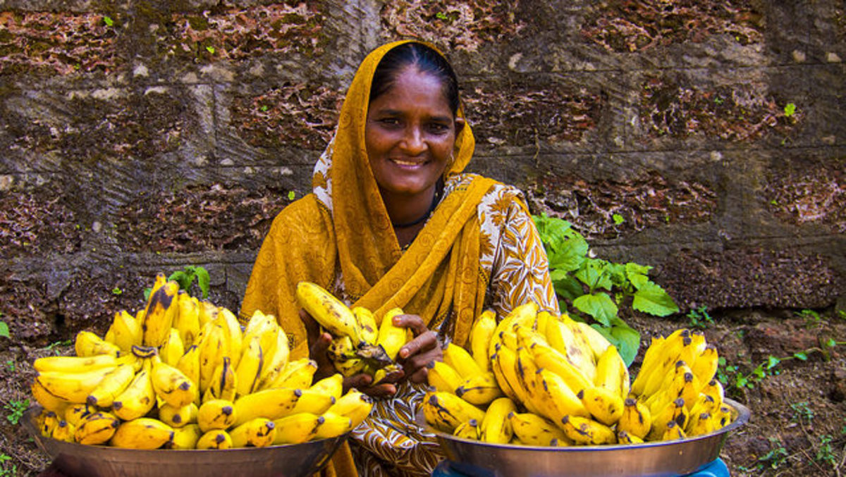 Streets of India - Goa Bananas Lady sells fresh bananas on the street