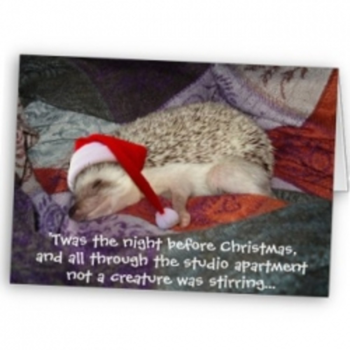 funny-night-before-christmas-poems