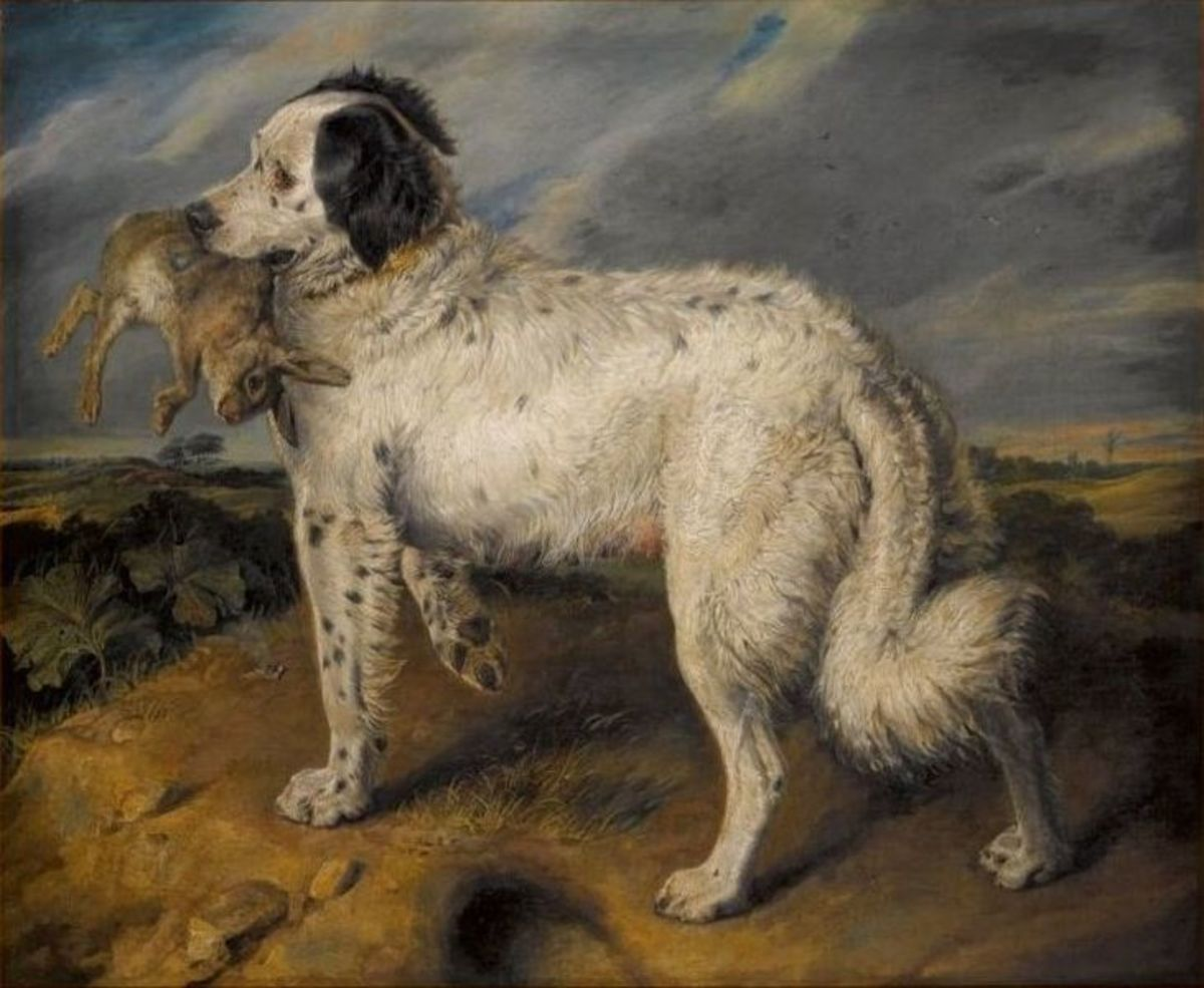 Sir Edwin Henry Landseer - The Champion; Venus, a Landseer Newfoundland with a rabbit. Image posted to Wiki Commons by Sothebys Auctioneers