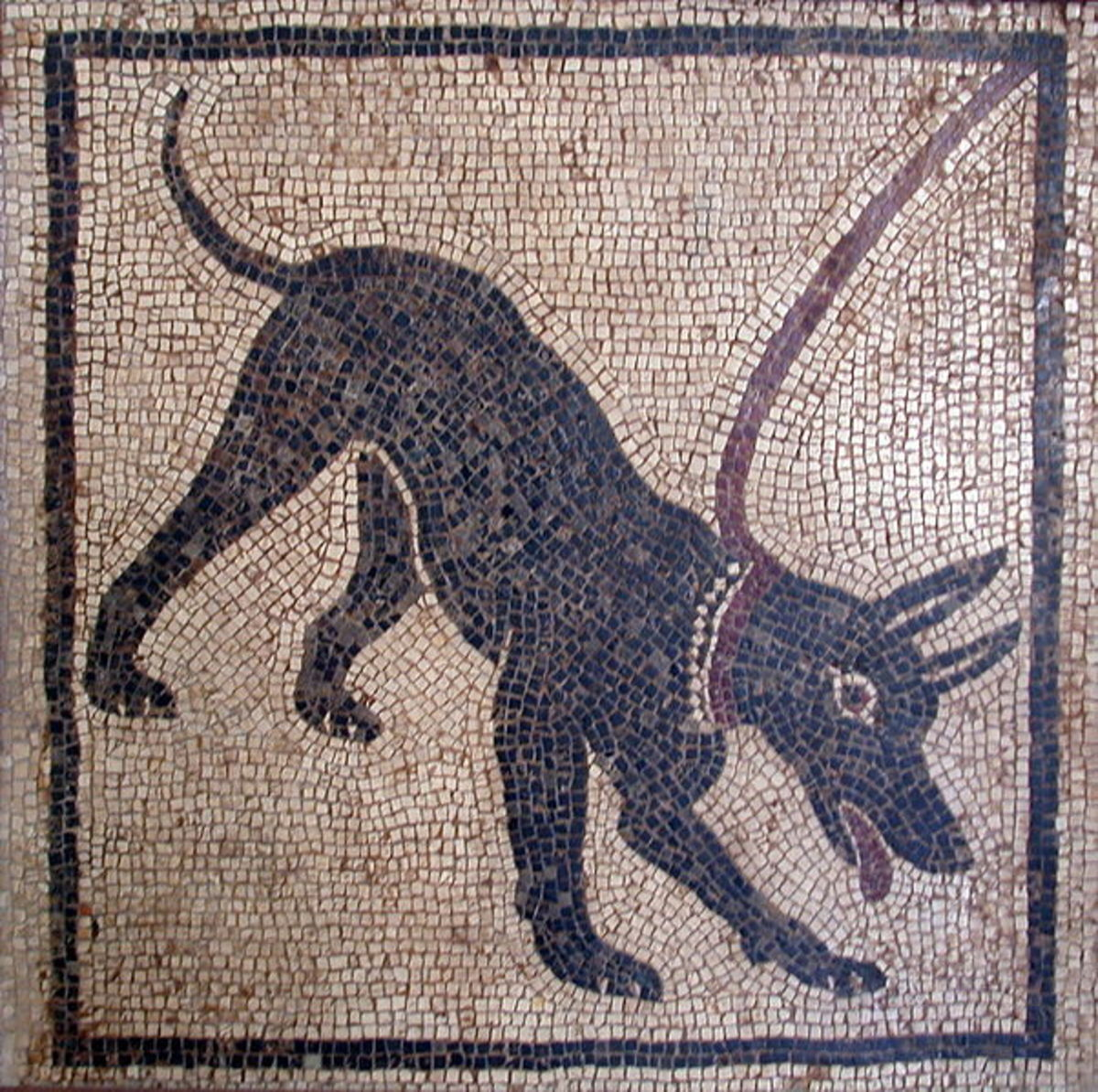 Cave Canum! A Roman mosaic from Pompeii on display at the Museo Archaelogico in Naples, Italy. Photographed by Massimo Finizio. Image Courtesy Wiki Commons