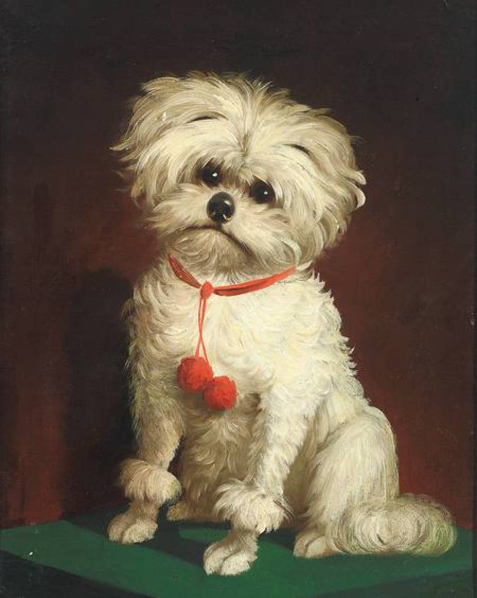 Portrait of a Little Dog by an anonymous 19th century artist. Posted on Wiki Commons by www.zeller.de/