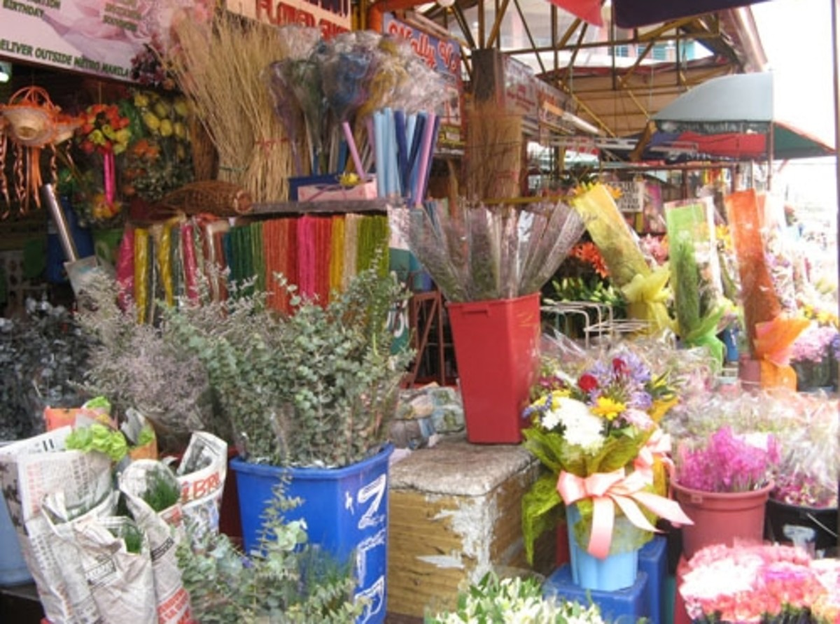 Take your pick (Courtesy of http://photos.the-protagonist.net/dangwa-flower-market/)