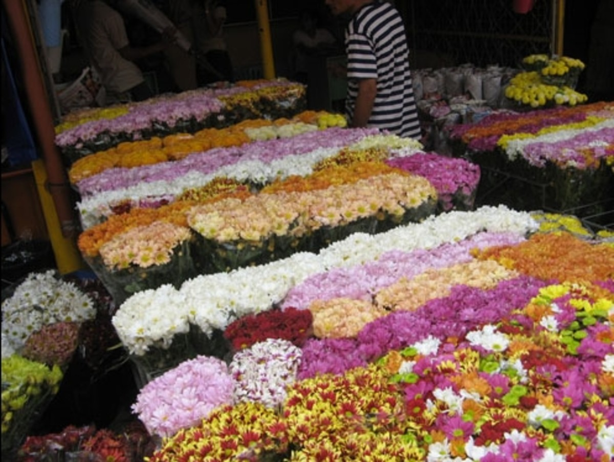 Flowers in Dangwa Market (Courtesy of http://photos.the-protagonist.net/dangwa-flower-market/)