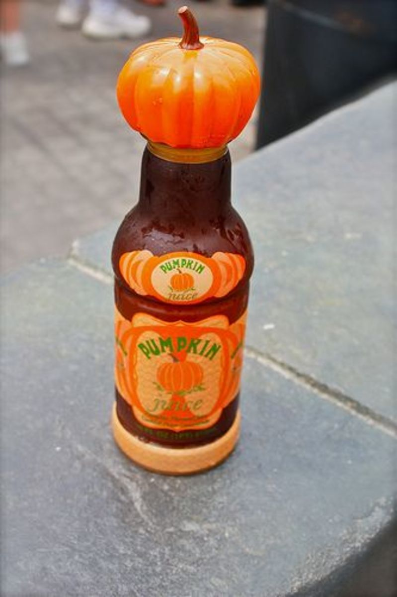 Wizarding World of Harry Potter Pumpkin Juice