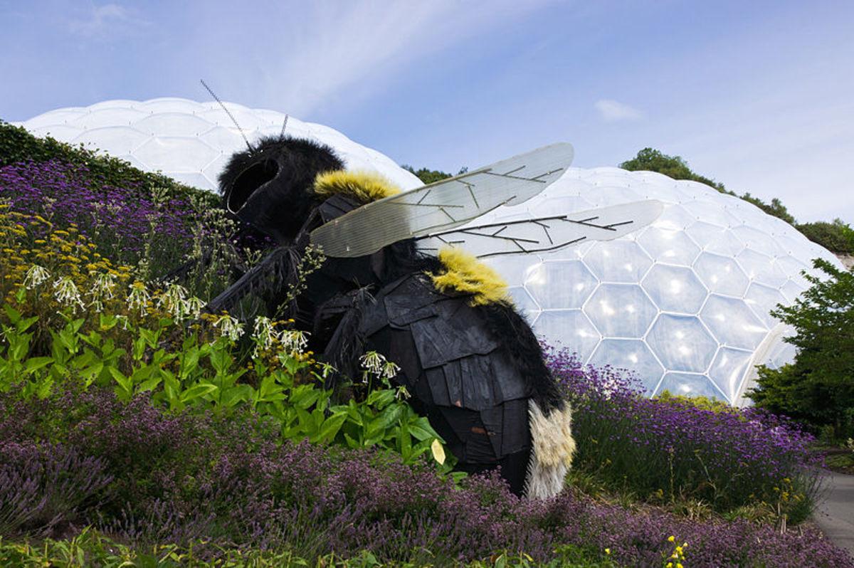 Eden Project, Cornwall: Giant Bee Sculpture.