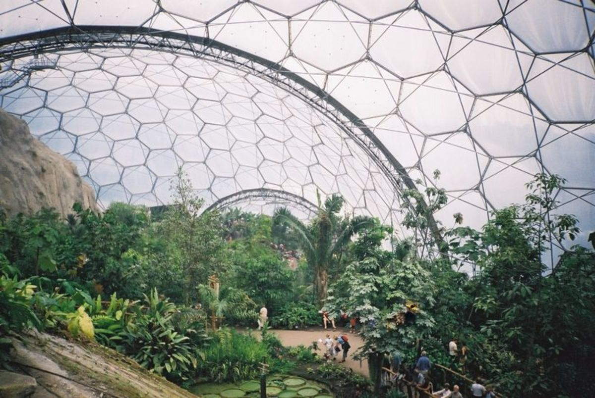 Eden Project, Cornwall: Inside the Biomes.  CC-BY; CC-BY-1.0.