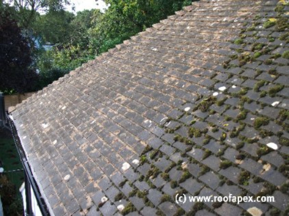 Roof moss removal in progress
