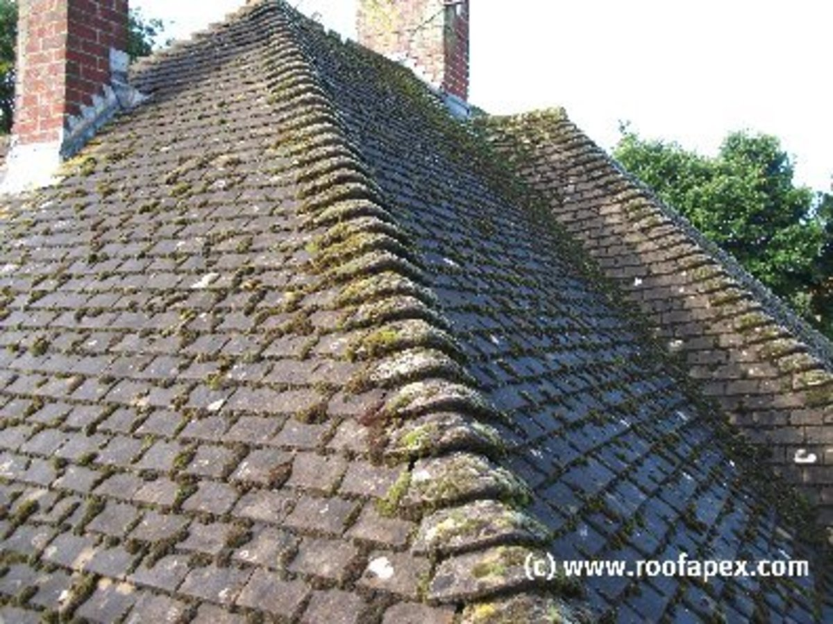 How to kill moss on roofs