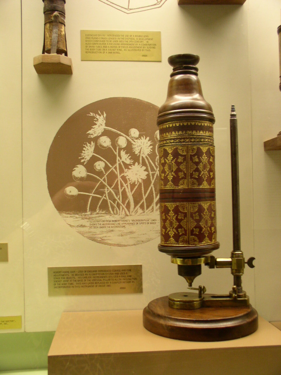 MICROSCOPE OF ROBERT HOOKE