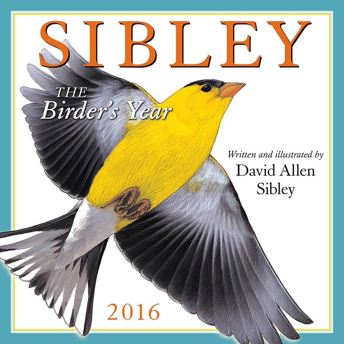 Sibley's Bird Calendars and Posters