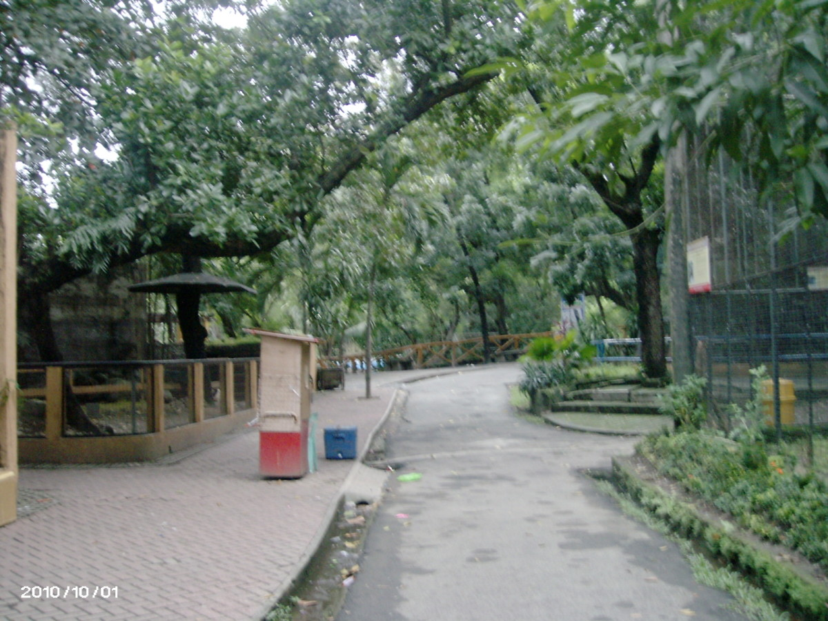 manila-zoo-the-oldest-zoo-in-asia
