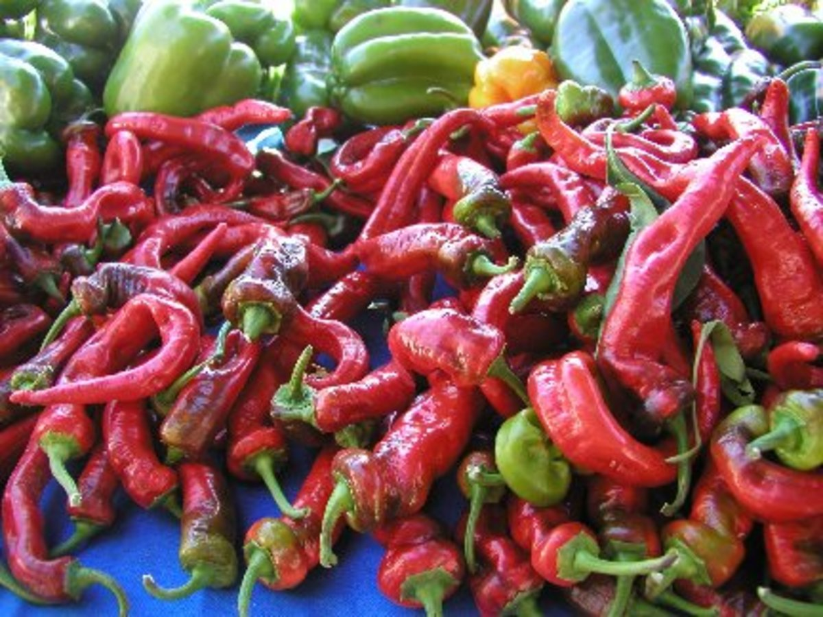 Avoid peppers during stomach ulcer