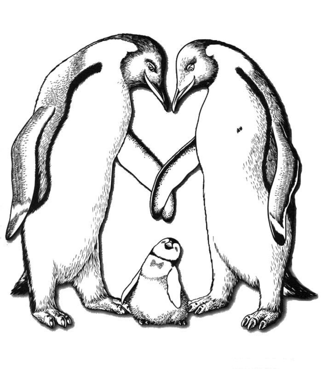 Kids Wild Animals Coloring Pages - Penguin Birds