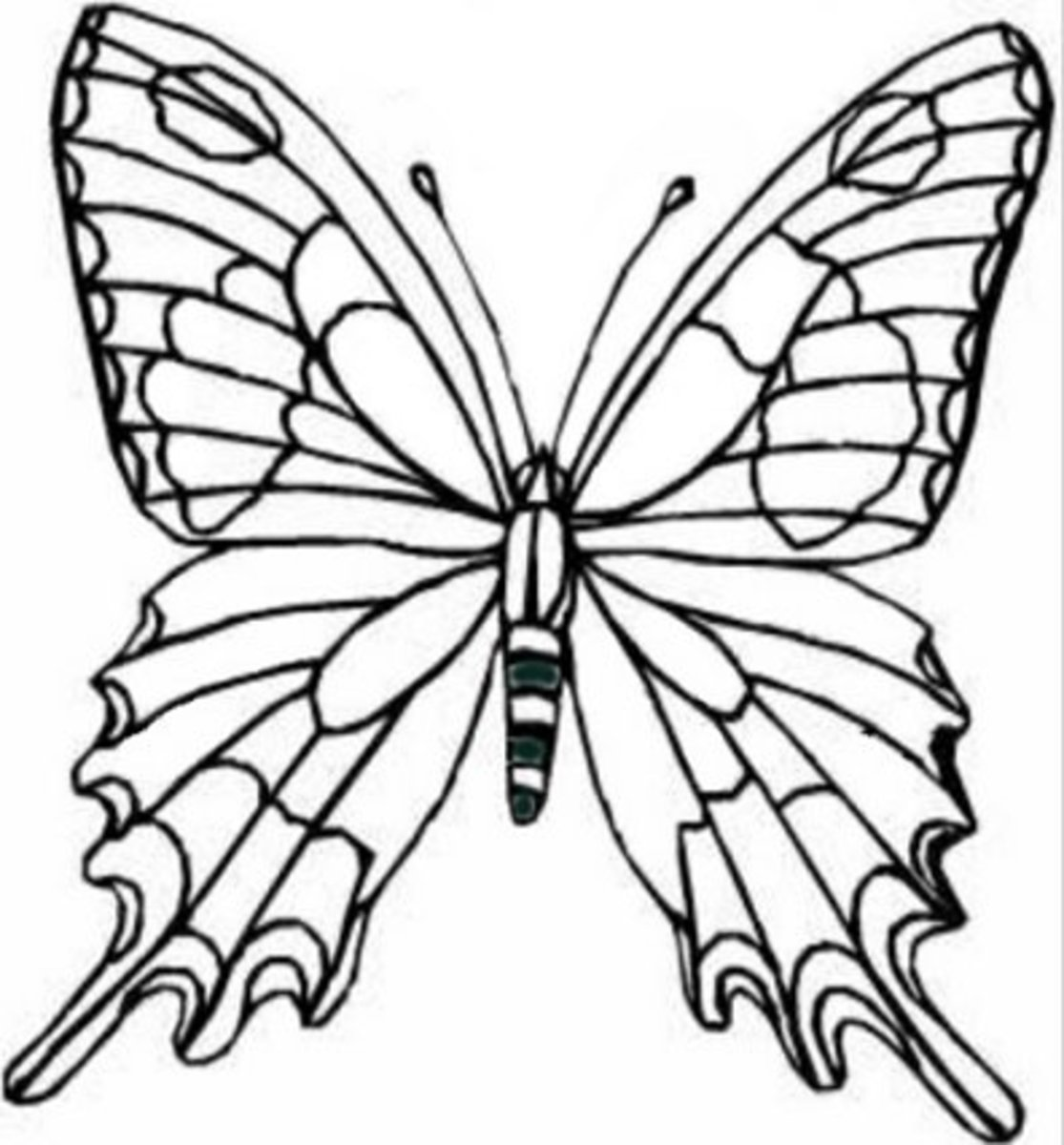 Kids Wild Animals Coloring Pages - Butterflies