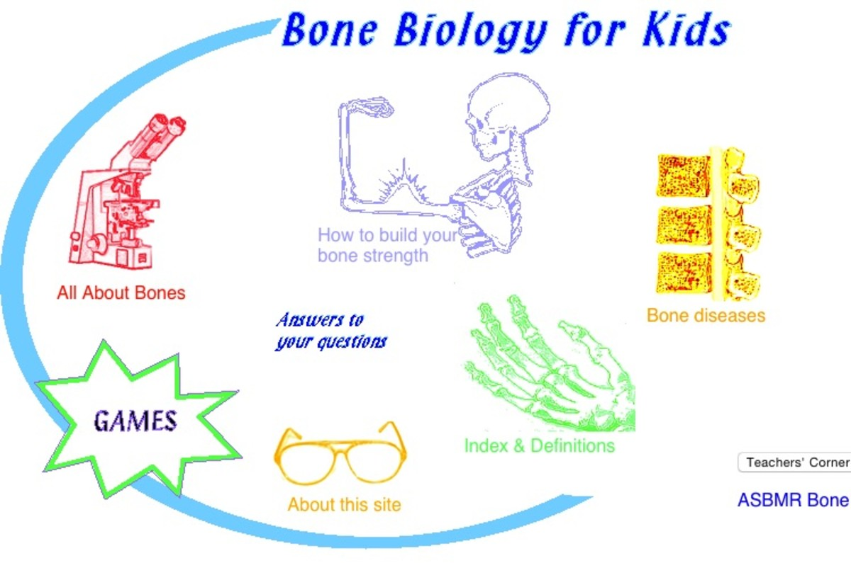 games with human skeleton – citybeauty, Skeleton