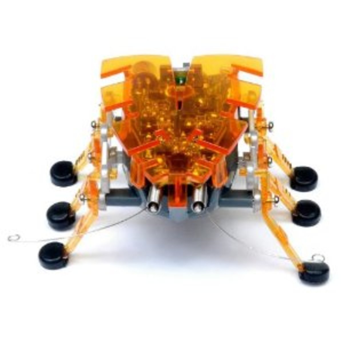 Hexbugs Review:  Types of Hex Bugs, The Original Spider, The Difference Between the Bugs and What They Do