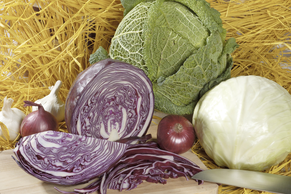 the-cabbage-soup-diet-without-going-insane