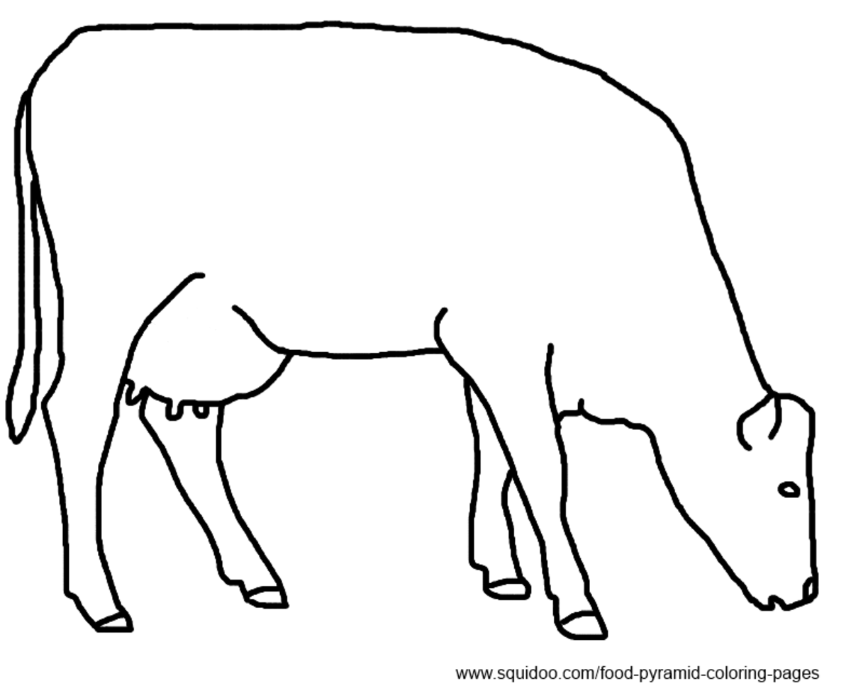 dairy cow coloring page