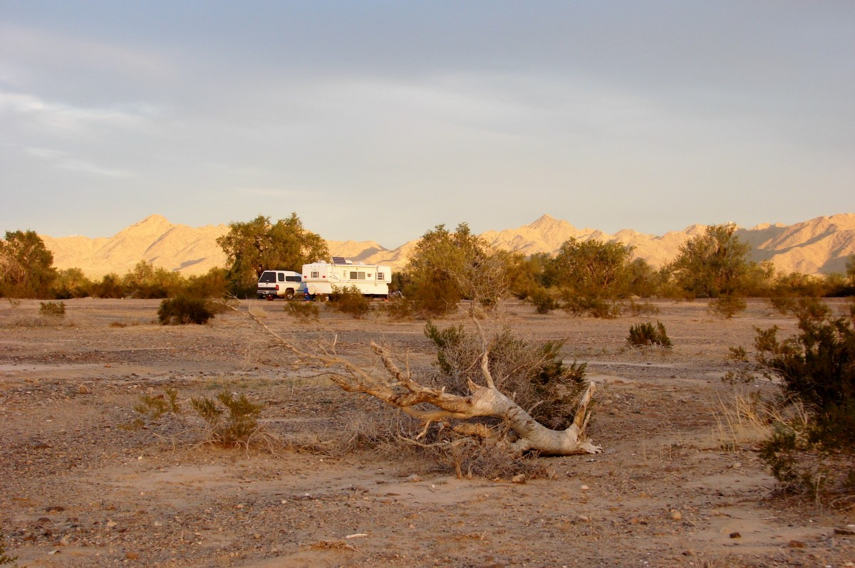Campsite at LaPosa South BLM near Quartzsite, AZ