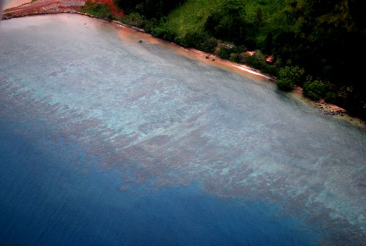 Beautiful view of fringing coral reef in Fiji