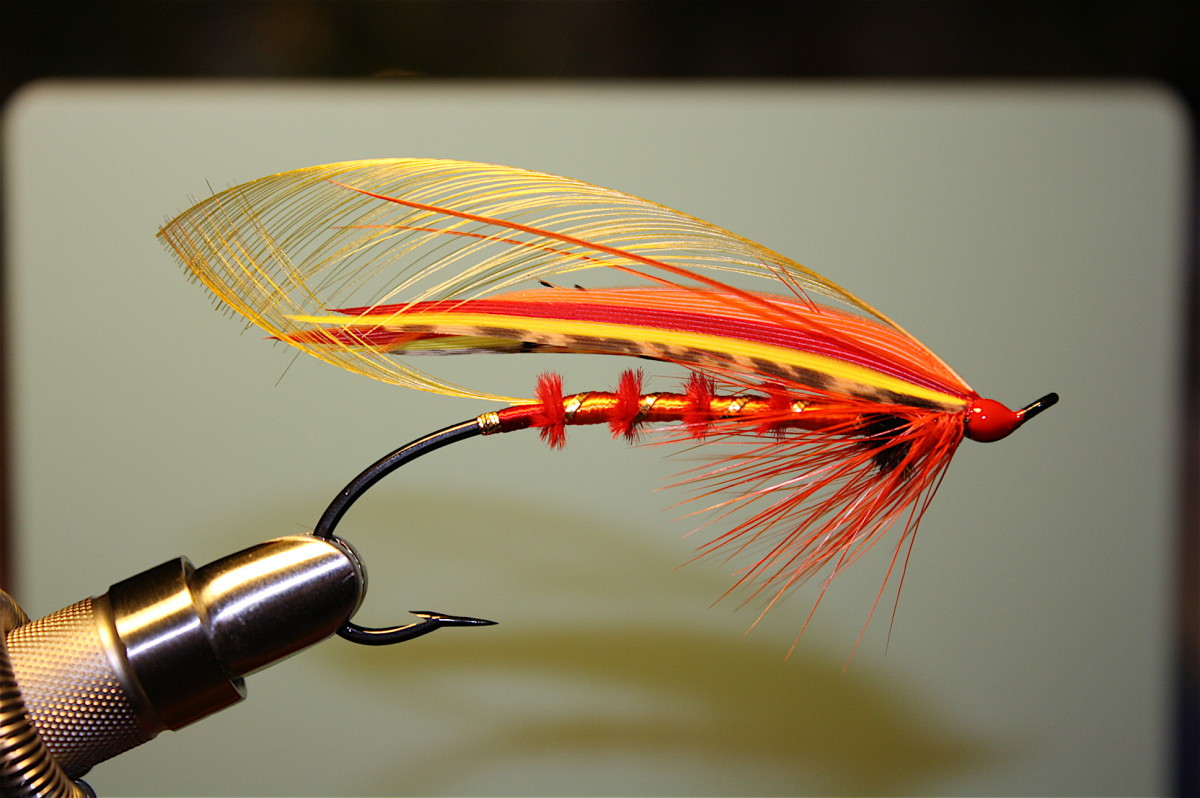 Here's a different color scheme for a classic salmon fly dressed on a 3/0 Partridge CS/10 'eyed' hook. It's my own concoction, with a 'married' wing... Pretty?