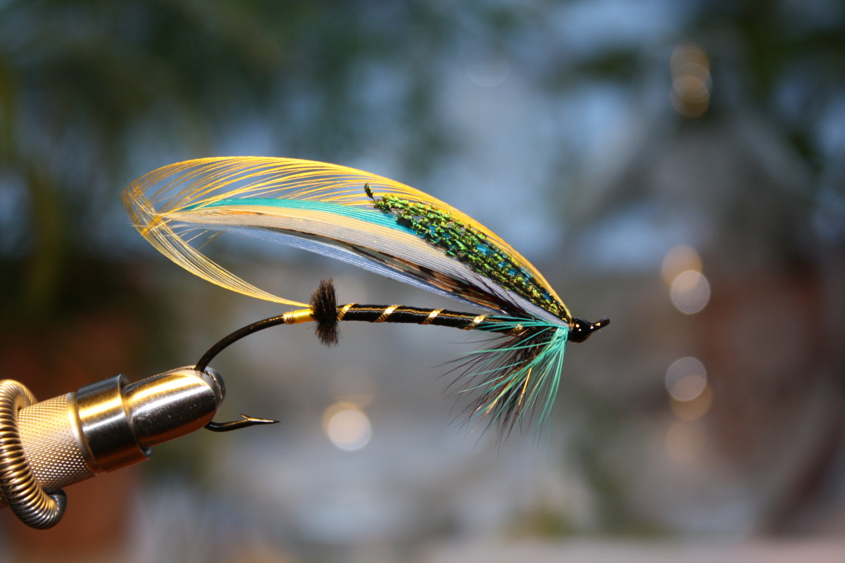 "I think I might call this salmon fly ""Little Bo Peep"". Notice the peacock sword feathers (iridescent green) toward the top front of the pattern."