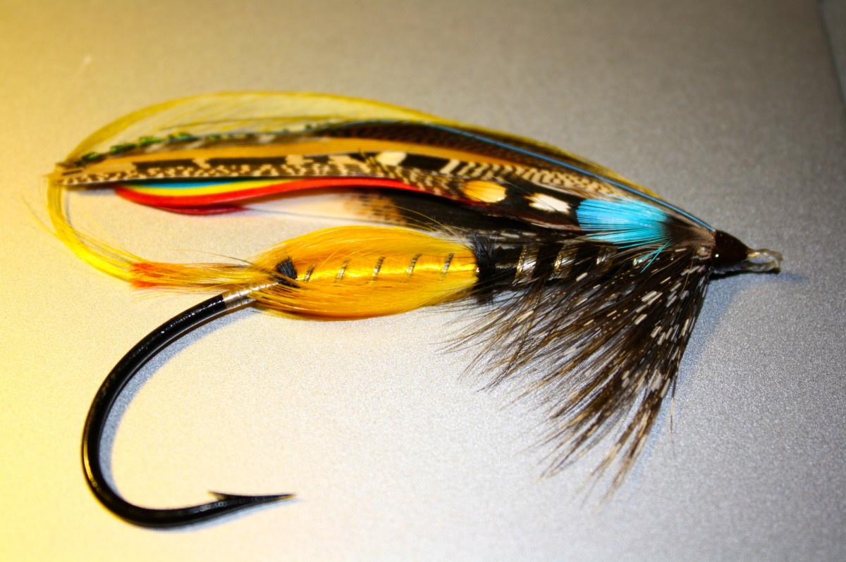 "This is what can be the end result of learning how to tie flies. The fly is a ""Jock Scott"", classic atlantic salmon fly."