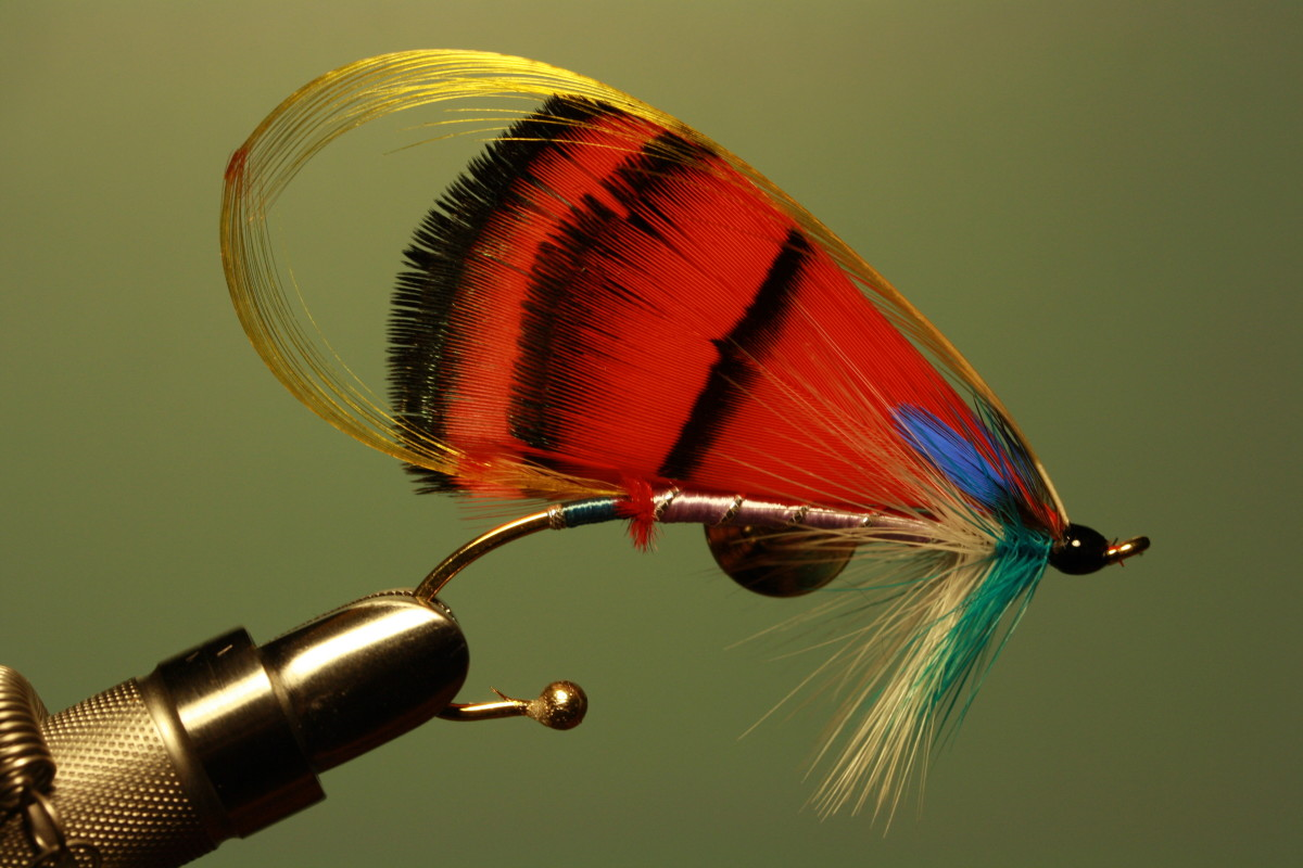 "An original atlantic salmon fly I dressed two days ago and photographed this morning. It's entitled ""Lady In Red""."