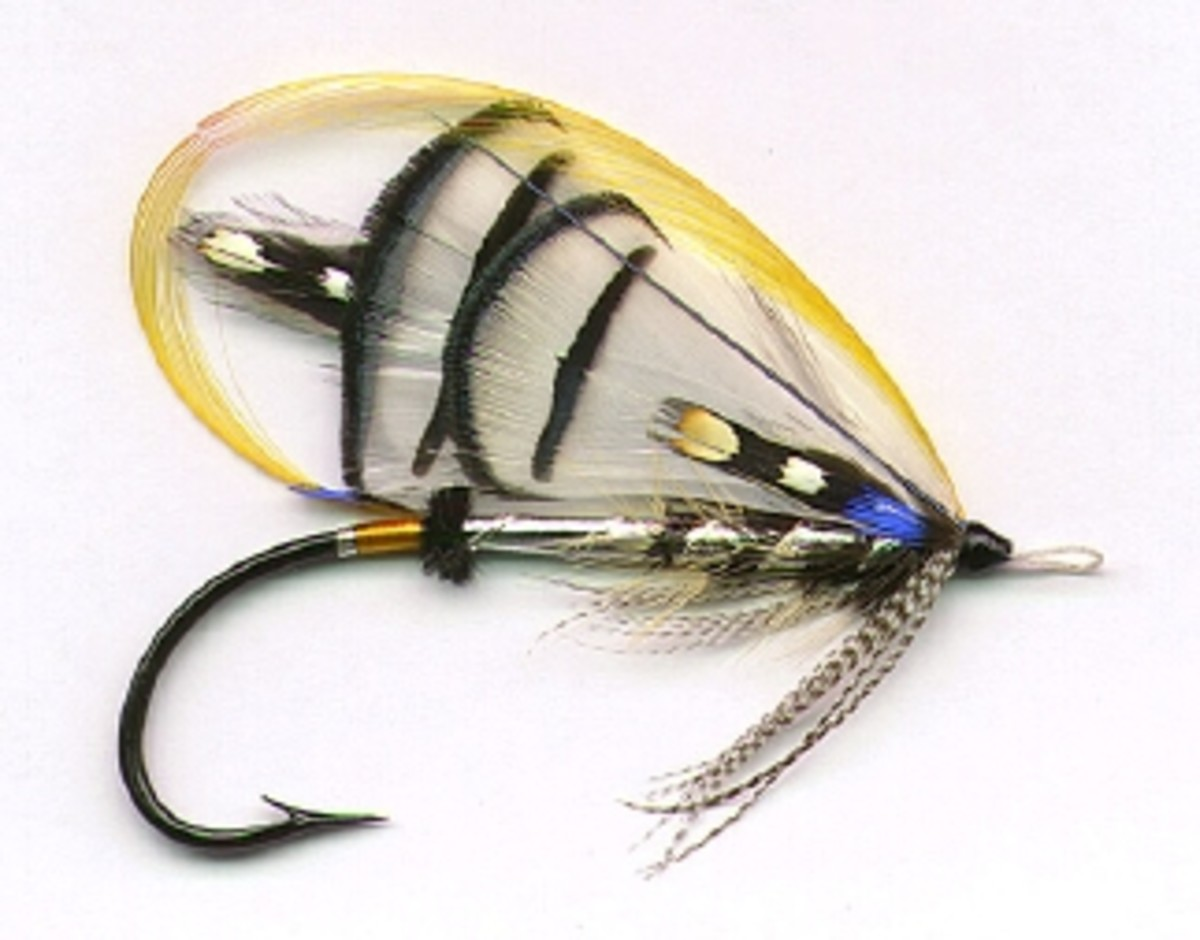 "I dressed this ""Lady Amherst"" salmon fly for my 'Welcome To Maxflies' website about ten years ago. One of the prettiest flies I've dressed in 32 years of professional salmon fly tying!"